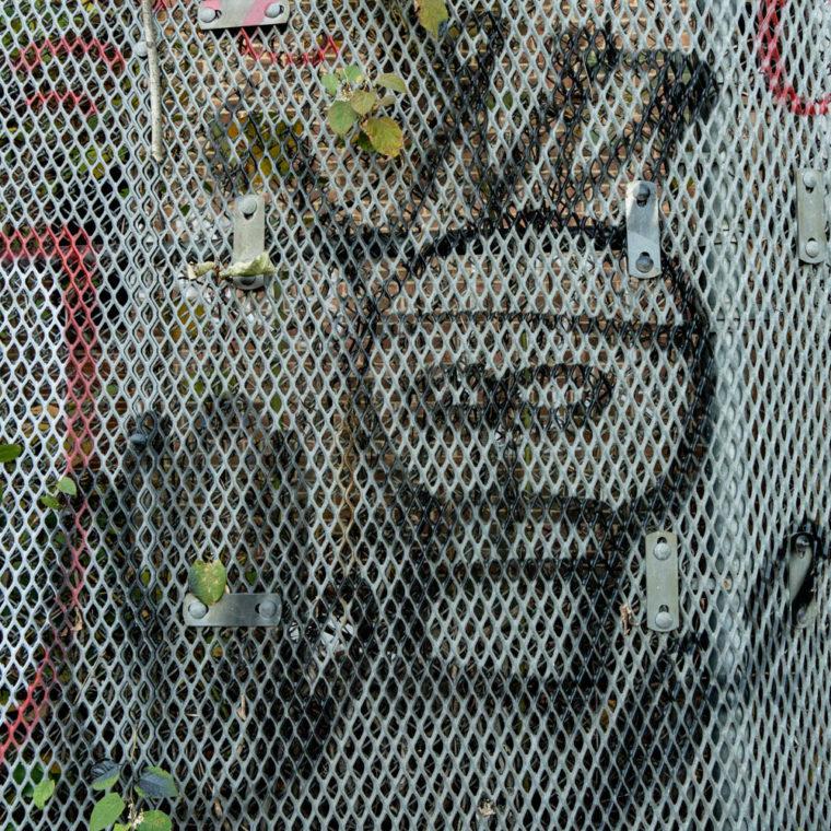 November 20, 2020: Crowned skull. Atlantic Avenue at Snediker Avenue, Brooklyn, New York. © Camilo José Vergara